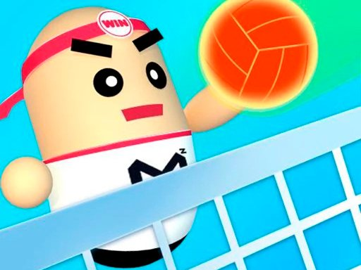 Play 3D Amazing VolleyBall Online